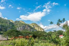 De valleimening van het Viï¿ aal ½ in Cuba Onwerkelijke aard met meren, berg, bomen, het wild Gorgeushemel stock foto's