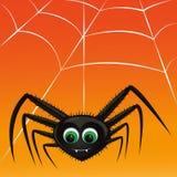 De vampier van de spin Stock Afbeelding