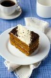 De van-cake van de spons met abrikozenjam in KOKOSNOOT Royalty-vrije Stock Foto