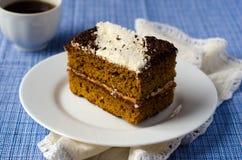 De van-cake van de spons met abrikozenjam in KOKOSNOOT Stock Foto's