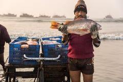De vangst van de visser Royalty-vrije Stock Foto's