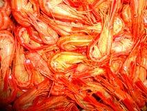 Is de vangst van het garnalen overzeese voedsel een schoonheid royalty-vrije stock afbeelding