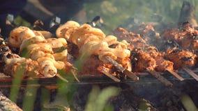 De varkensvleeskebabs worden geroosterd over een brand in hete steenkolen stock video