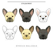 De vastgestelde doelstellingen schetsen Franse buldog verschillende kleur Leuke hond Stock Fotografie