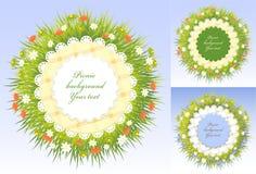 De vastgestelde frames van de Picknick met gras en bloemen Royalty-vrije Stock Fotografie