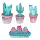 De Vastgestelde groenachtig blauwe, roze en violette kleuren van de waterverfcactus vector illustratie
