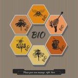 De vastgestelde honing etiketteert 2 Stock Fotografie