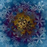 De vastgestelde inzameling van het sneeuwvlokkenpictogram Vectorvormen Royalty-vrije Stock Afbeeldingen