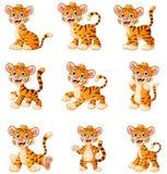 De vastgestelde inzameling van het tijgerbeeldverhaal Royalty-vrije Stock Foto's