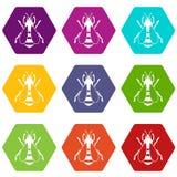 De vastgestelde kleur van het bijenpictogram hexahedron Royalty-vrije Stock Afbeeldingen