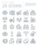De vastgestelde Vector Vlakke Druif van Lijnpictogrammen Royalty-vrije Stock Afbeelding