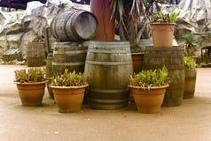 De vaten en de potten plaatsten binnen stock fotografie