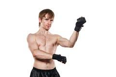 De vechter in gemengde krijgs het vechten handschoenen Royalty-vrije Stock Afbeelding