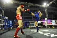 De Kampioenschappen van de Wereld van Muaythai Royalty-vrije Stock Foto