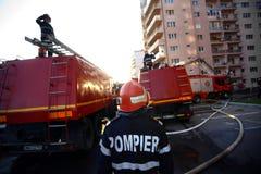 De vechters van de brand op het werk Stock Fotografie