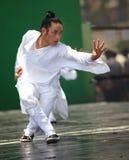 De Vechtsporten van Wudang Stock Foto