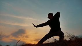 De vechtsportenmonnik van de mensenstrijder het praktizeren de kungfu van de silhouetkarate op de grasrijke horizon bij zonsonder stock video
