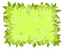 De vector Achtergrond van Bladeren   Stock Foto's