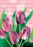 De vector bloemen groene tulp van de illustratieaard royalty-vrije illustratie