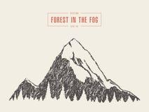 De vector bos getrokken stijl van de berg piekpijnboom Stock Foto's