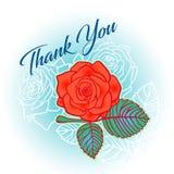 de vector dankt u kaardt beeld met kalligrafie, rozen en bladerenachtergrond Royalty-vrije Stock Fotografie