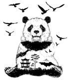 De vector Dubbele blootstelling, panda draagt Stock Afbeelding