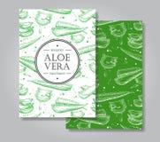 De vector getrokken illustraties van aloëvera hand De banner van aloëvera, pos stock illustratie