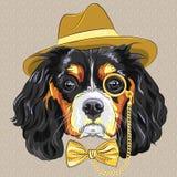 De vector grappige Koning Charles Span van de beeldverhaal hipster hond vector illustratie