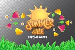 De vector horizontale banner van de sammerverkoop met tekst, de zomer groen gras, vliegende verse citroenen, bloemen en plak van  Stock Fotografie