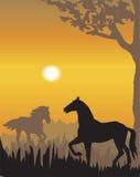 De vector illustratie van het avondlandschap royalty-vrije illustratie