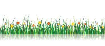 De vector Illustratie van het Gras met bloemen Royalty-vrije Stock Afbeelding