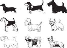 De vector Illustratie van Honden Royalty-vrije Stock Afbeelding