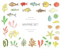 De vector kleurde reeks vissen, overzeese die shells, zeewieren op witte achtergrond worden geïsoleerd stock illustratie