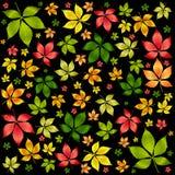 De vector kleurrijke herfst doorbladert. De achtergrond van de herfst Stock Foto's
