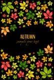 De vector kleurrijke herfst doorbladert. De achtergrond van de herfst Stock Fotografie