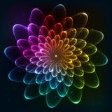 De vector kosmische bloem van regenboogkleuren Stock Afbeelding