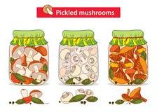 De vector met ingelegde boleet oranje-GLB wordt geplaatst, de cantharellen en de champignons schieten in glaskruik als paddestoel stock illustratie