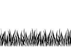 De vector naadloze grens met het gras van de inkttekening, artistieke botanische illustratie, isoleerde bloemenelementen, getrokk Royalty-vrije Stock Foto