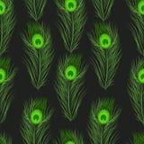 De vector naadloze veren van de patroonpauw Stock Fotografie