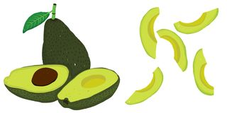 De vector plaatste met avocado's painterly editable, scalable illustrati vector illustratie