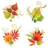 De vector reeks van de kleurrijke herfst doorbladert Stock Foto