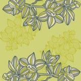 Bloemen textuur stock illustratie