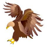 Eagle-vector royalty-vrije stock fotografie