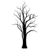 De vector van de boom Royalty-vrije Stock Afbeeldingen