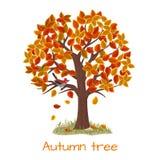 De vector van de de herfstboom Stock Fotografie