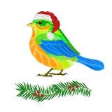 De vector van de Kerstmisvogel Stock Foto's