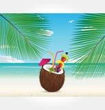 De vector van de Reeks van het strand en van de Cocktail Royalty-vrije Stock Afbeeldingen