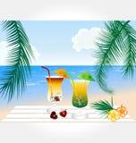 De vector van de Reeks van het strand en van de Cocktail Royalty-vrije Stock Afbeelding