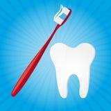 De vector van de tandenborstel en van de tand Stock Afbeelding