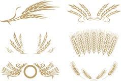 De vector van de tarwe Stock Afbeelding